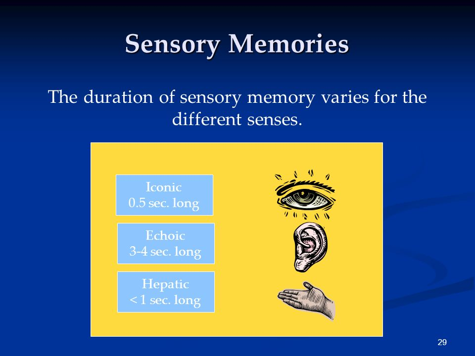 The duration of sensory memory varies for the different senses.