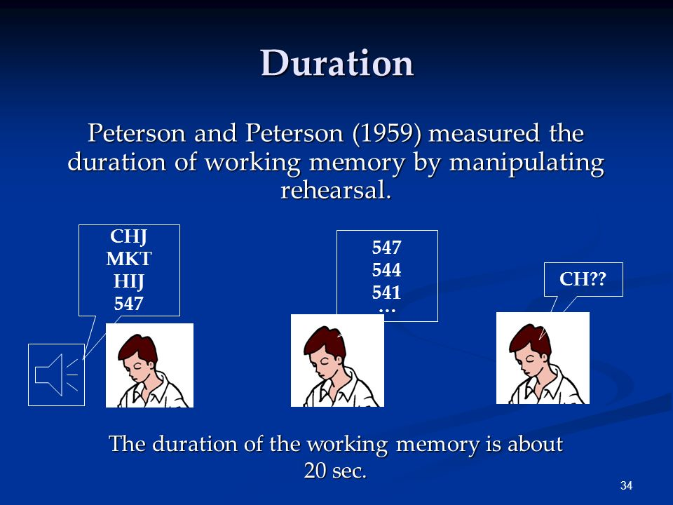 The duration of the working memory is about 20 sec.