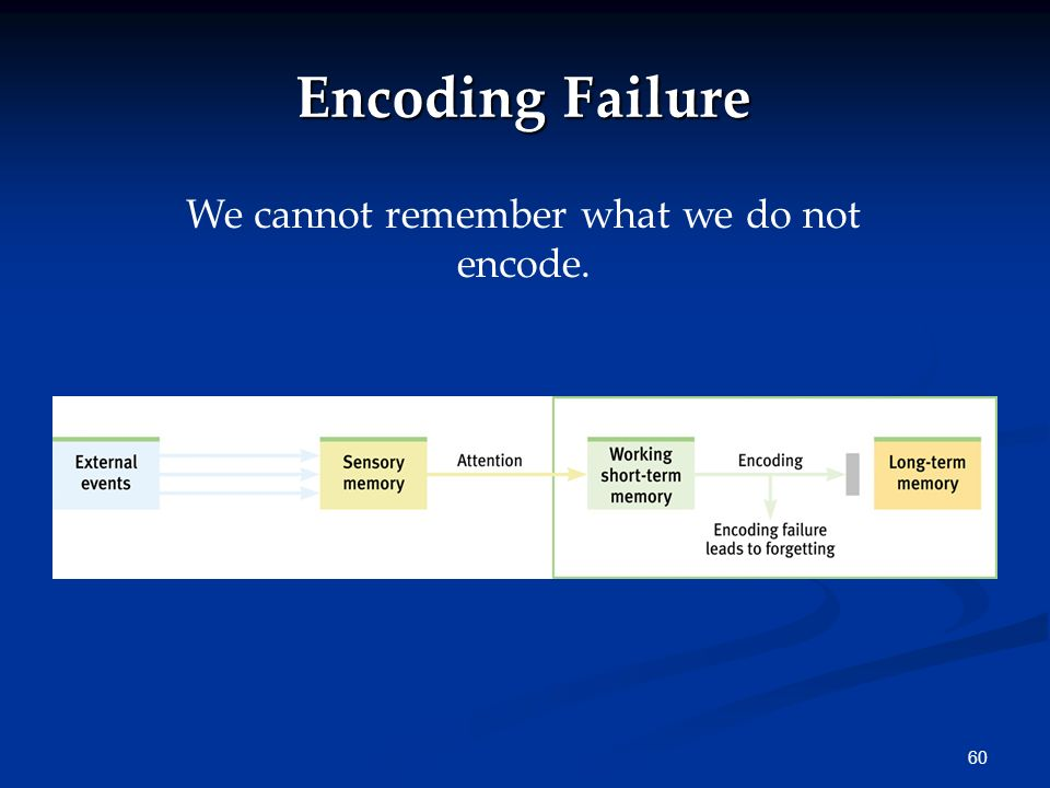 We cannot remember what we do not encode.
