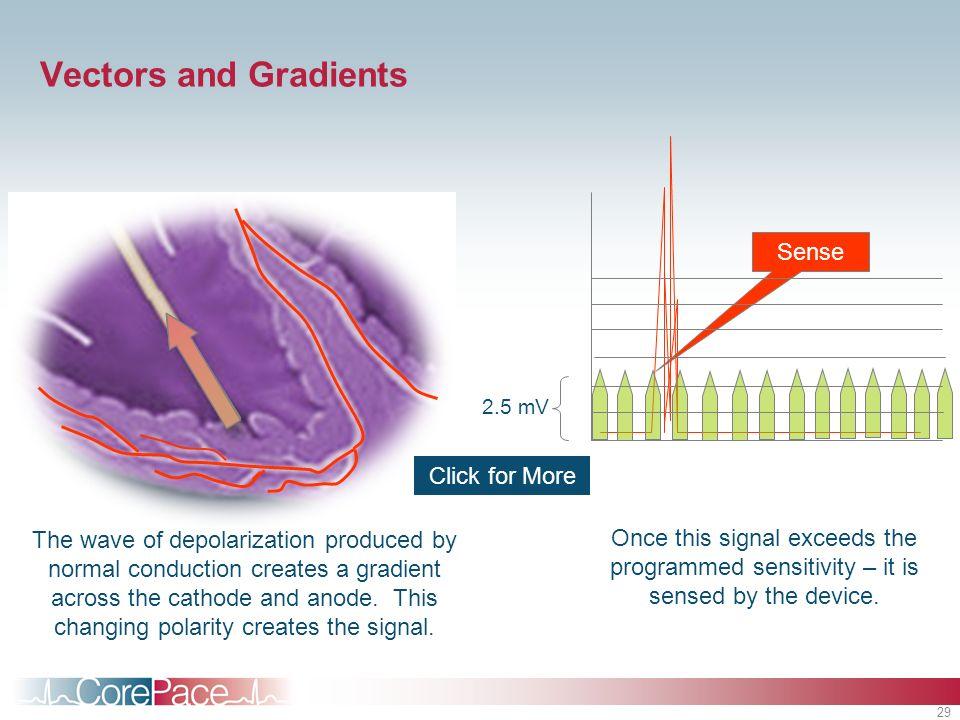 Vectors and Gradients Sense Click for More
