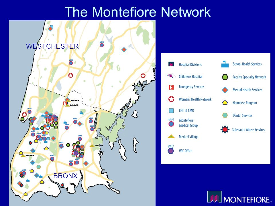 The Montefiore Network