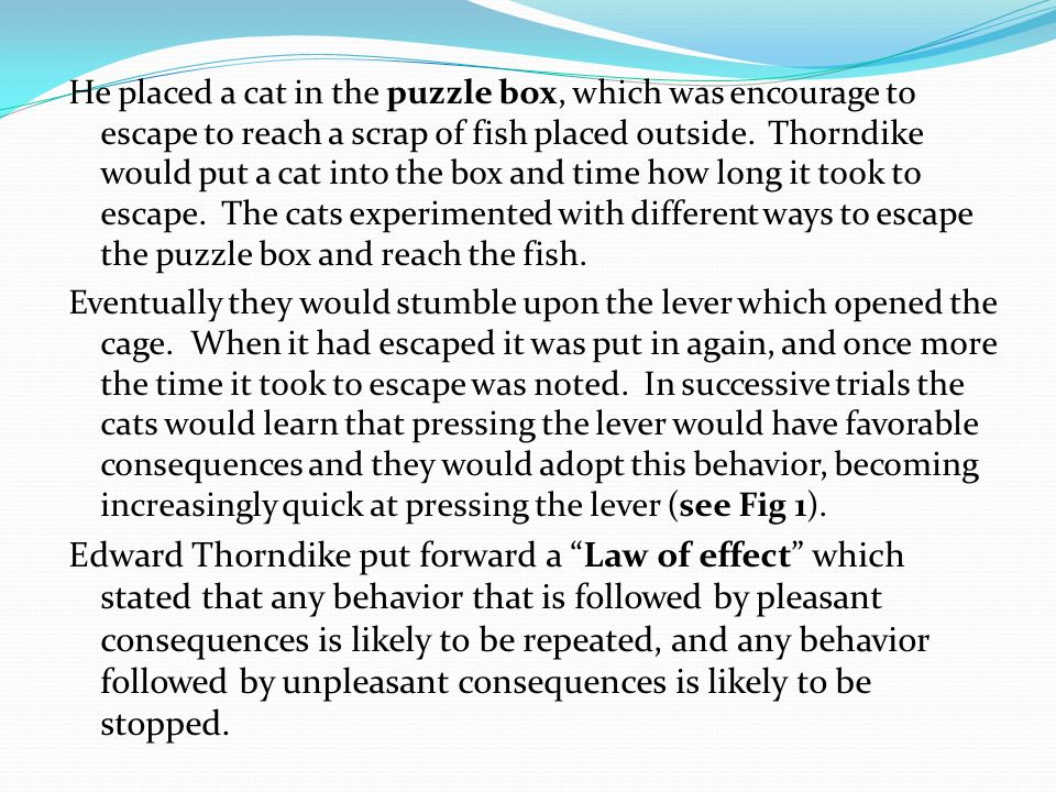 He placed a cat in the puzzle box, which was encourage to escape to reach a scrap of fish placed outside. Thorndike would put a cat into the box and time how long it took to escape. The cats experimented with different ways to escape the puzzle box and reach the fish.