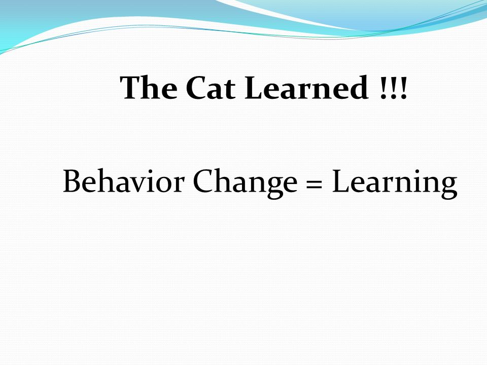 The Cat Learned !!! Behavior Change = Learning
