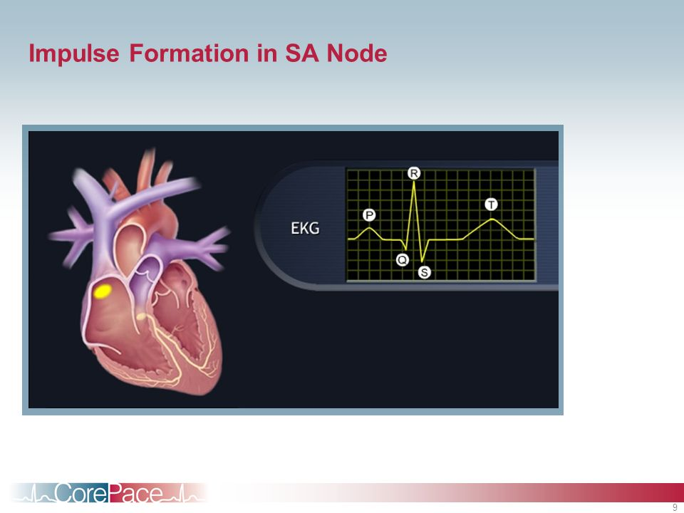 Impulse Formation in SA Node
