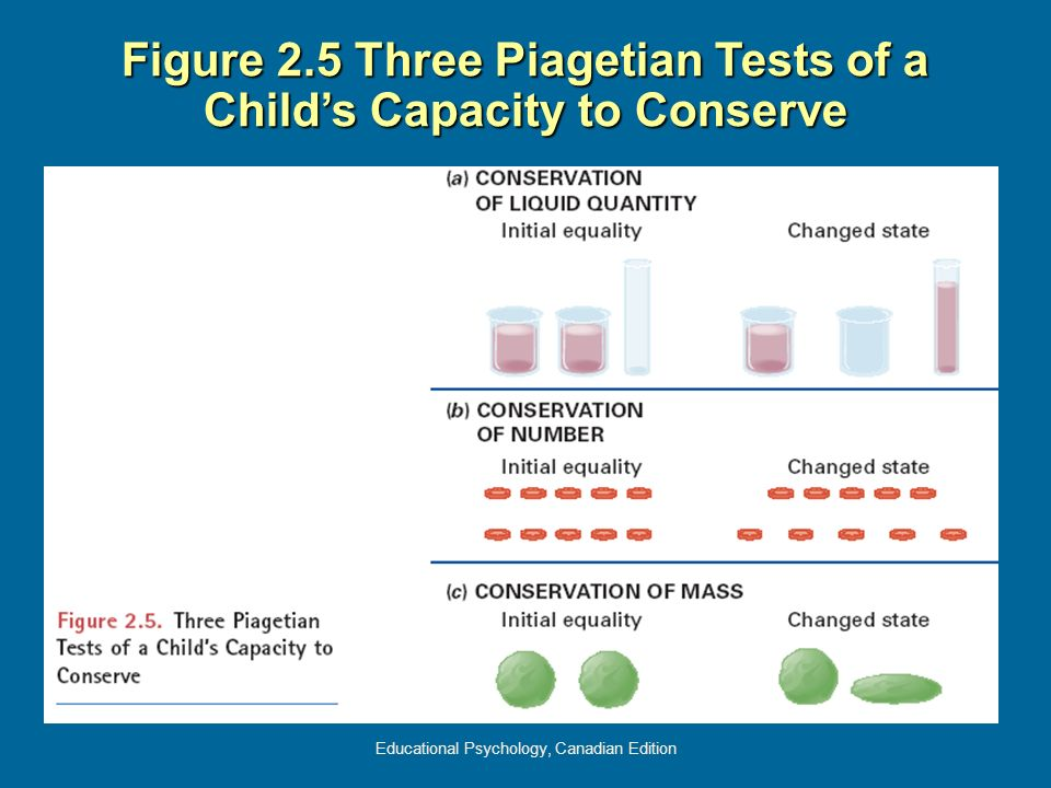 Figure 2.5 Three Piagetian Tests of a Child's Capacity to Conserve