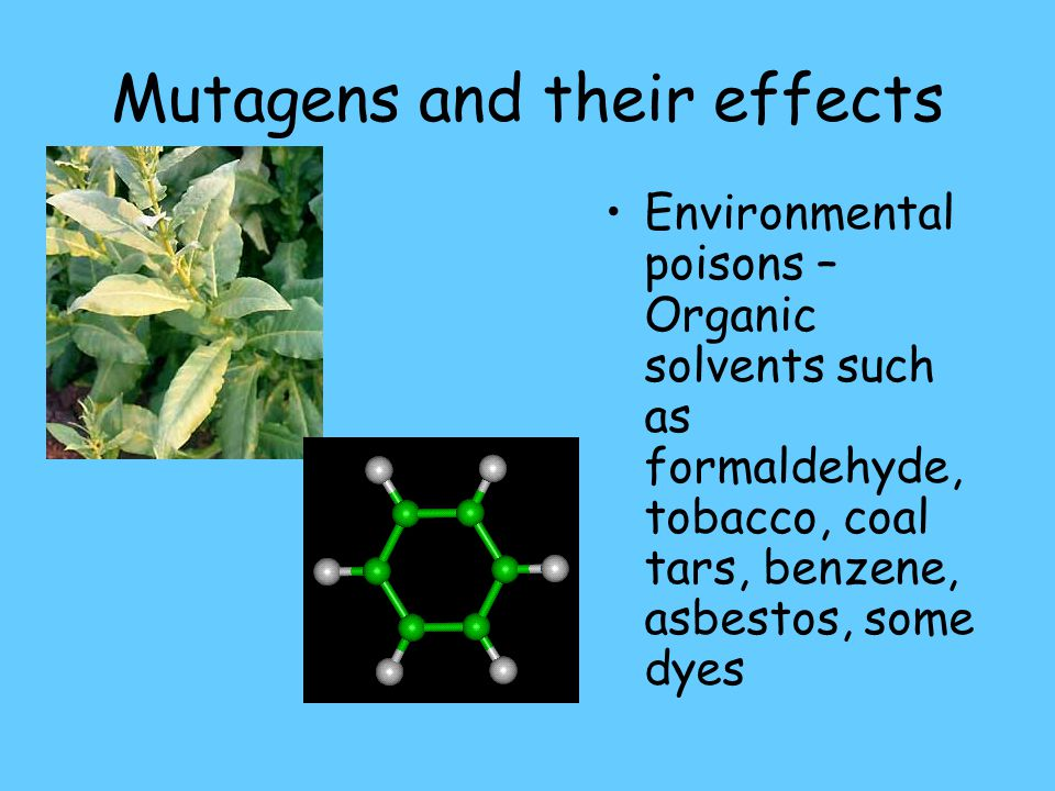 Mutagens and their effects