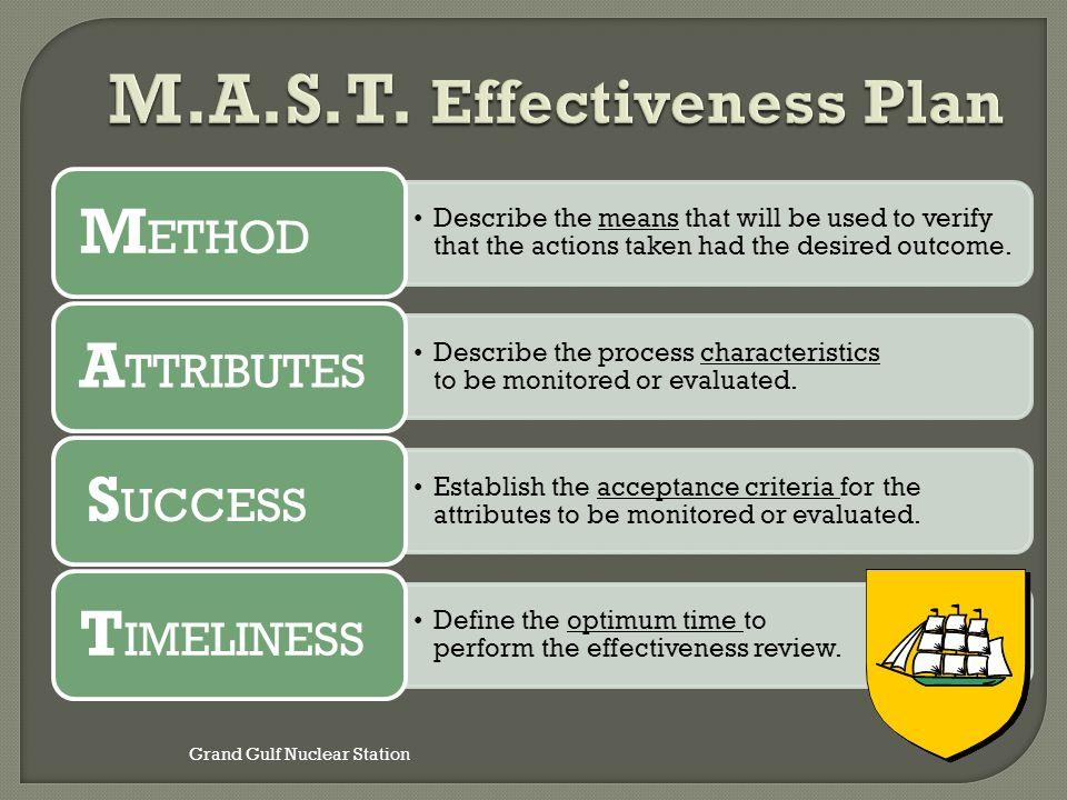 M.A.S.T. Effectiveness Plan