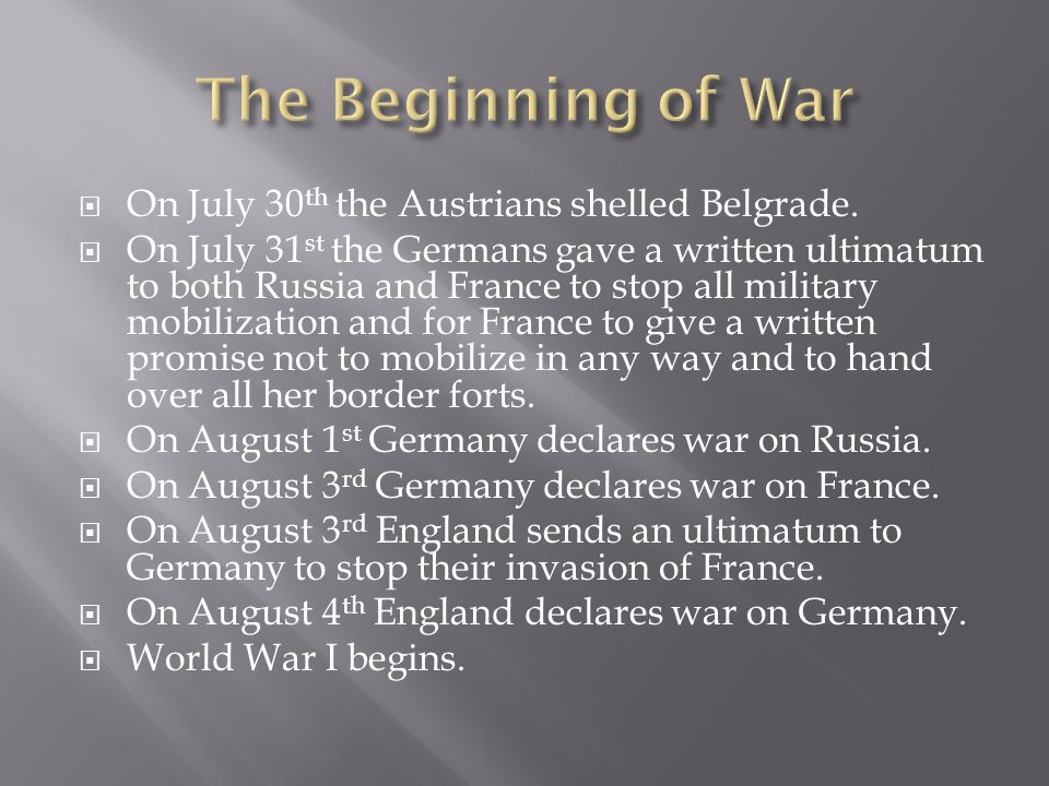 The Beginning of War On July 30th the Austrians shelled Belgrade.