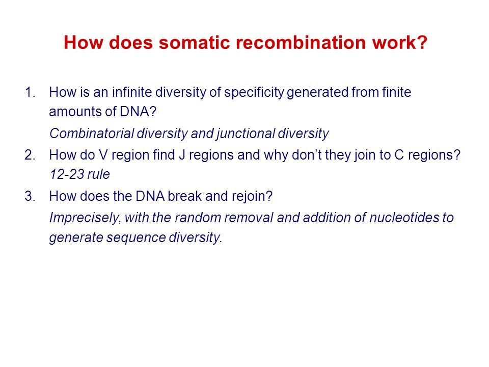 How does somatic recombination work