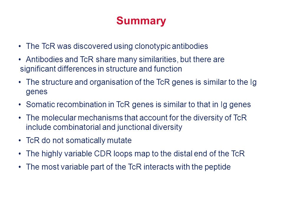 Summary • The TcR was discovered using clonotypic antibodies