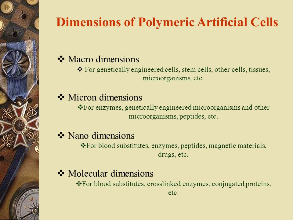 Dimensions of Polymeric Artificial Cells