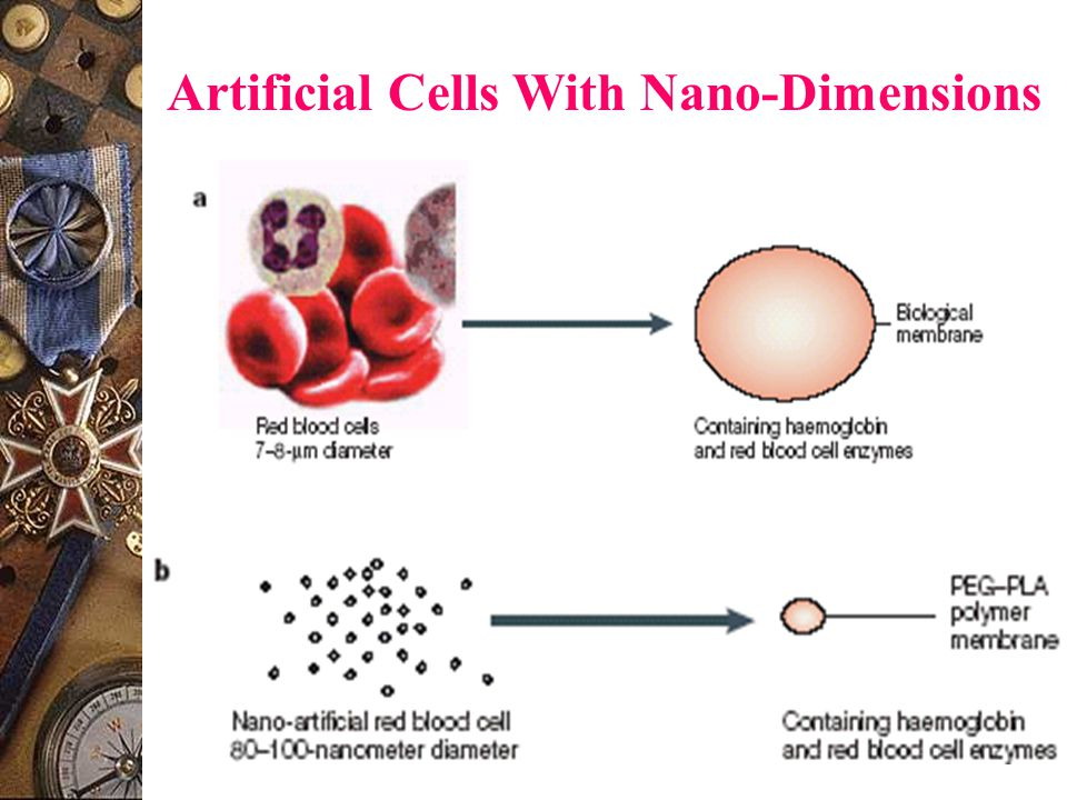 Artificial Cells With Nano-Dimensions