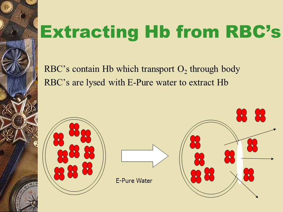 Extracting Hb from RBC's