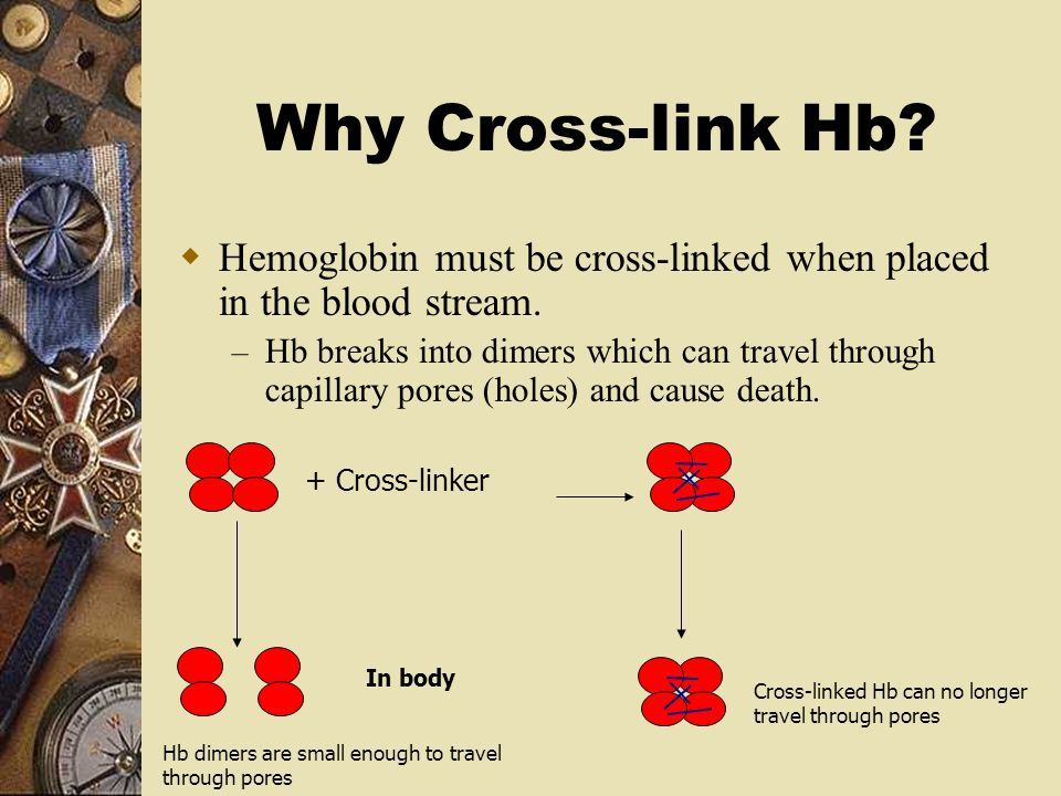 Why Cross-link Hb Hemoglobin must be cross-linked when placed in the blood stream.