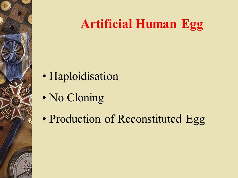 Artificial Human Egg Haploidisation No Cloning