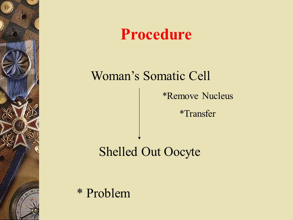 Procedure Woman's Somatic Cell Shelled Out Oocyte * Problem