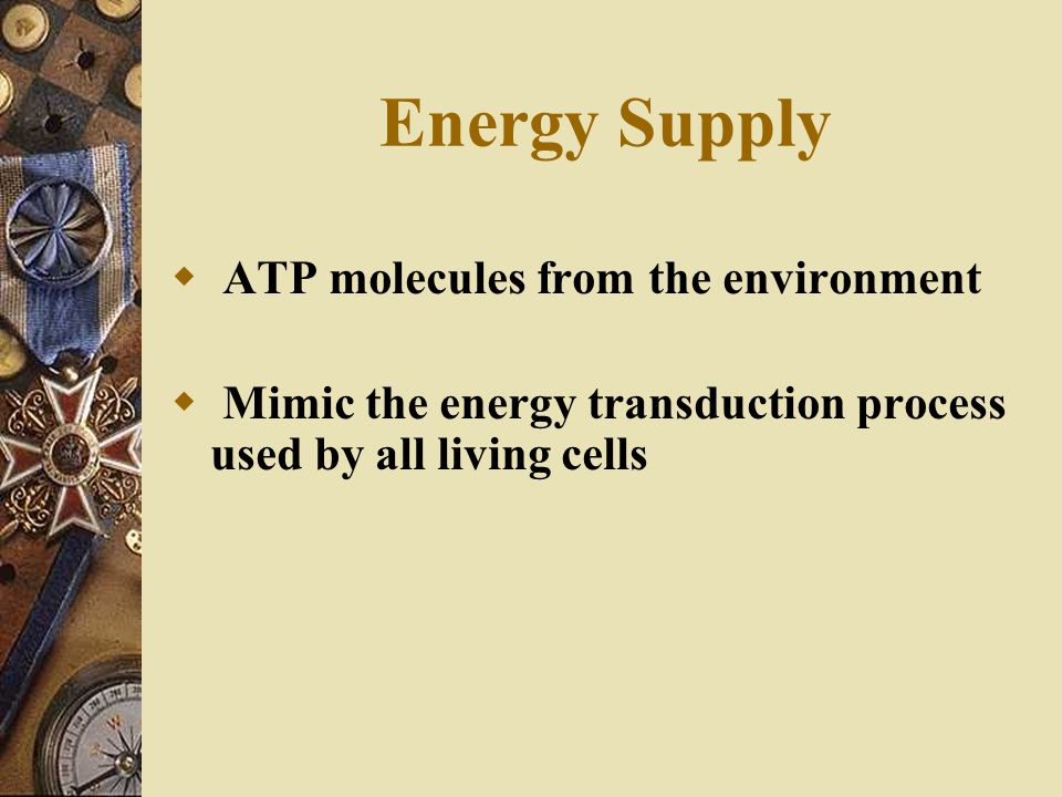 Energy Supply ATP molecules from the environment