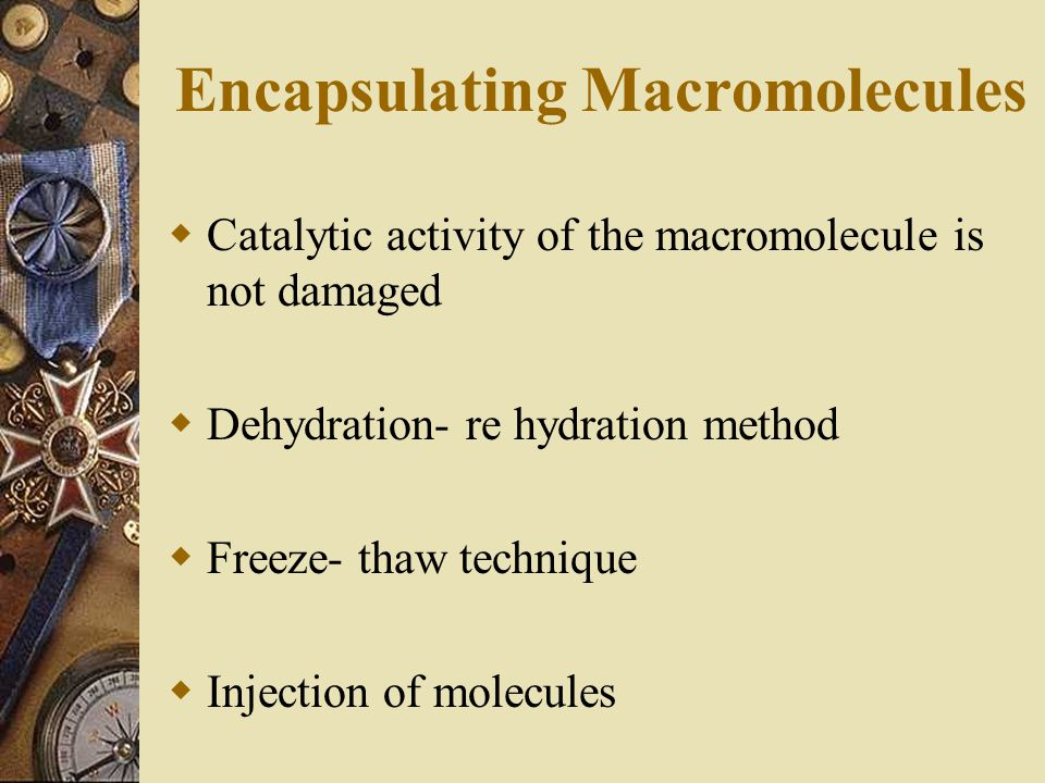 Encapsulating Macromolecules