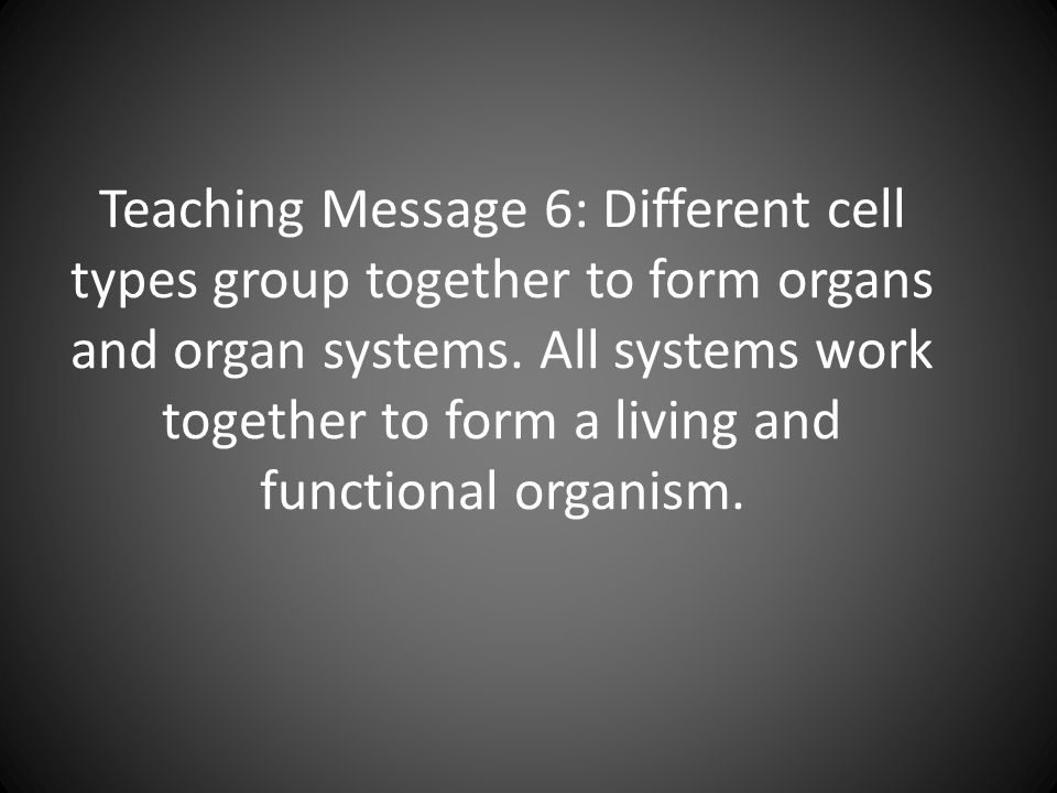 Teaching Message 6: Different cell types group together to form organs and organ systems.