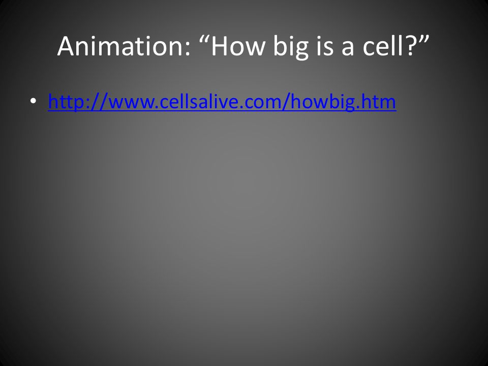 Animation: How big is a cell