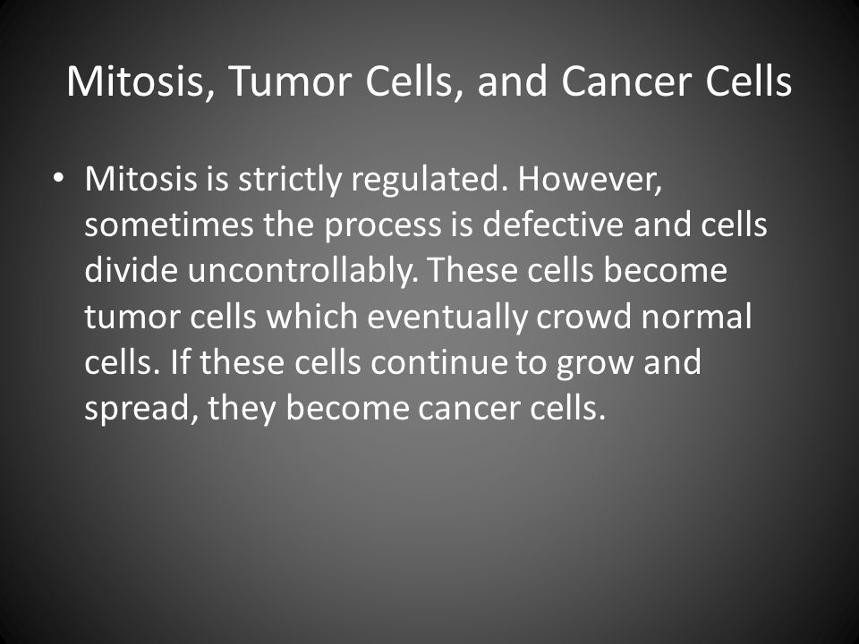 Mitosis, Tumor Cells, and Cancer Cells