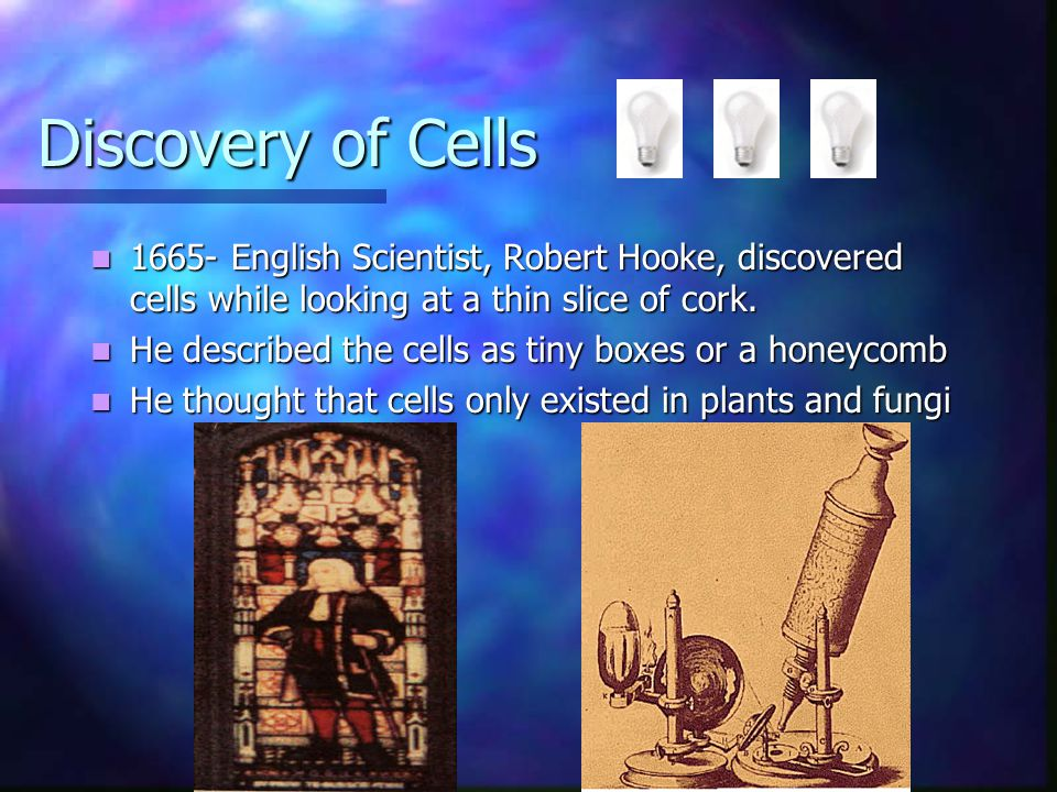 Discovery of Cells 1665- English Scientist, Robert Hooke, discovered cells while looking at a thin slice of cork.