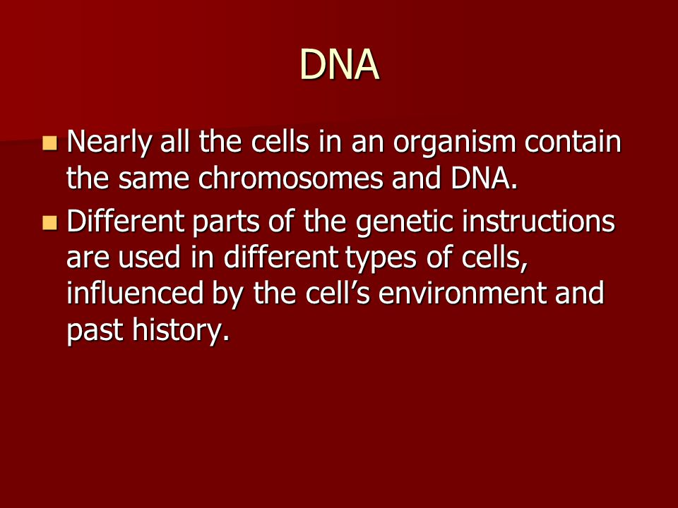 DNA Nearly all the cells in an organism contain the same chromosomes and DNA.