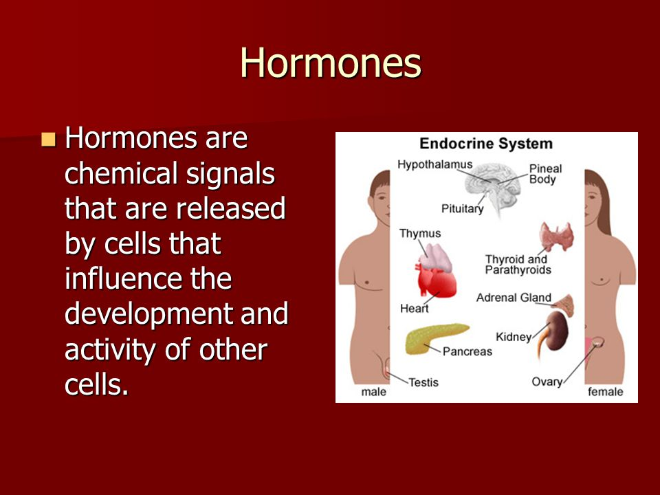 Hormones Hormones are chemical signals that are released by cells that influence the development and activity of other cells.