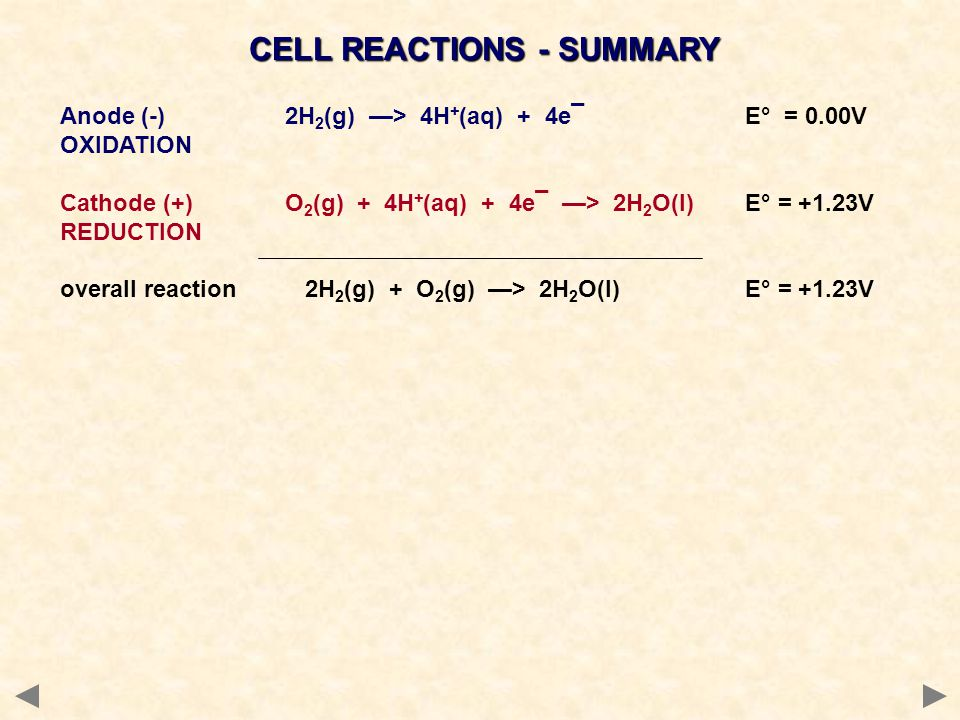 CELL REACTIONS - SUMMARY