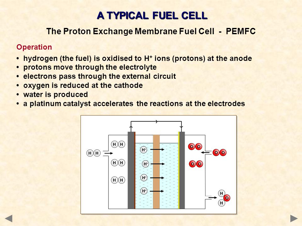The Proton Exchange Membrane Fuel Cell - PEMFC