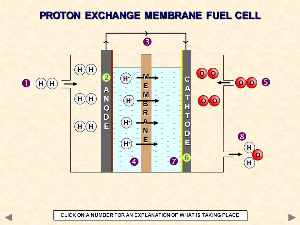         PROTON EXCHANGE MEMBRANE FUEL CELL MEMBRANE CATHT ODE