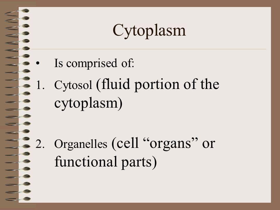 Cytoplasm Is comprised of: Cytosol (fluid portion of the cytoplasm)
