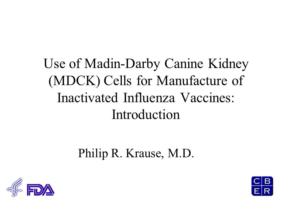 Use of Madin-Darby Canine Kidney (MDCK) Cells for Manufacture of Inactivated Influenza Vaccines: Introduction