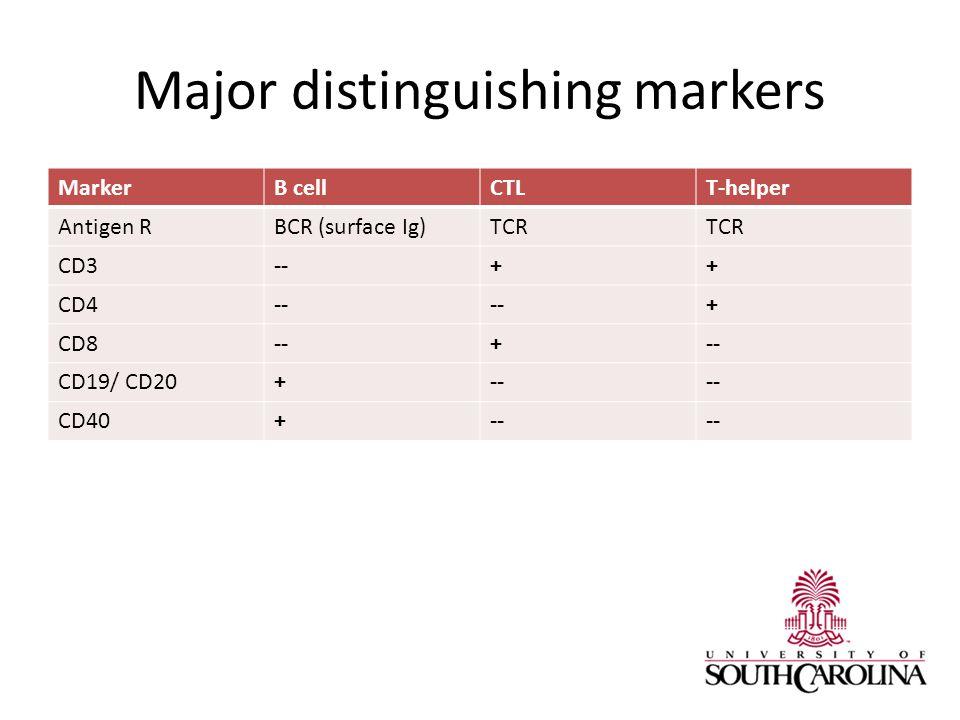 Major distinguishing markers