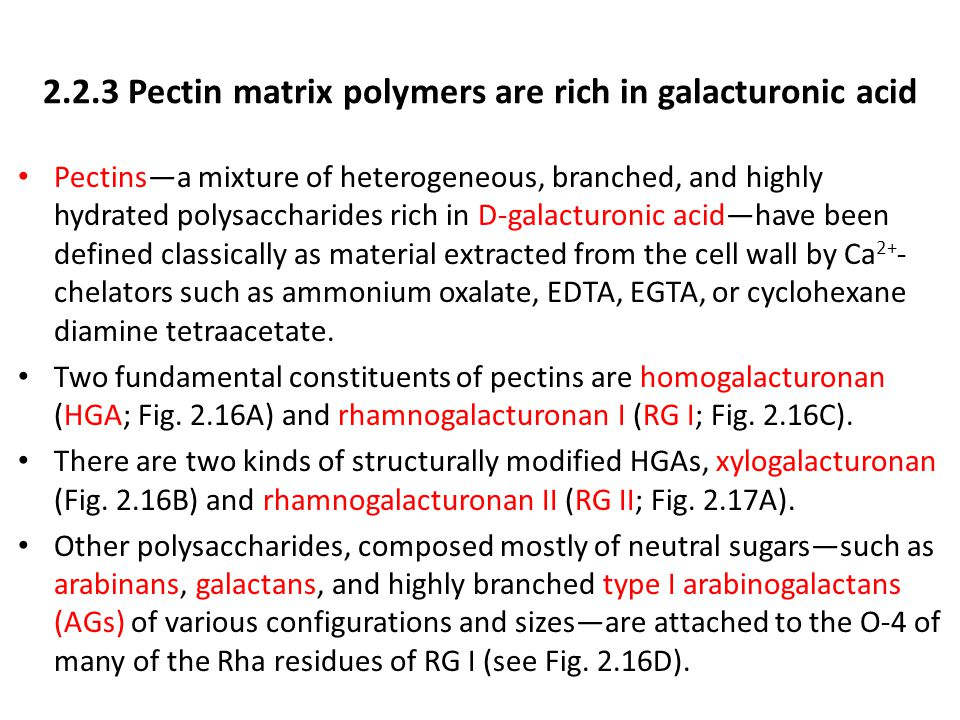 2.2.3 Pectin matrix polymers are rich in galacturonic acid