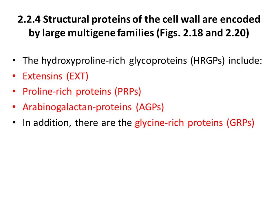 2.2.4 Structural proteins of the cell wall are encoded by large multigene families (Figs. 2.18 and 2.20)