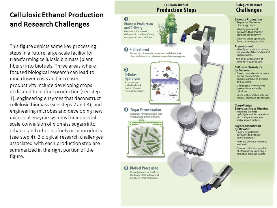 Cellulosic Ethanol Production and Research Challenges