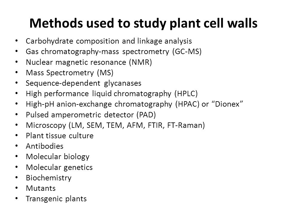 Methods used to study plant cell walls