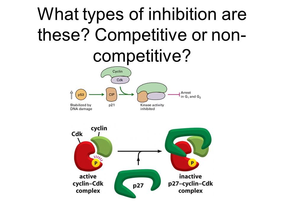 What types of inhibition are these Competitive or non-competitive