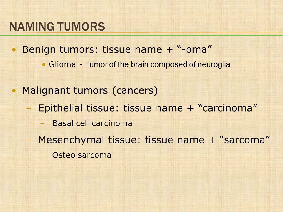 Naming Tumors Benign tumors: tissue name + -oma
