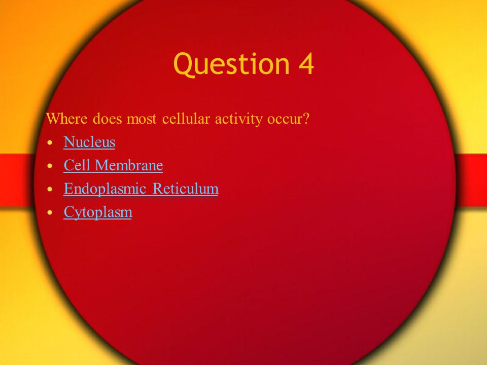 Question 4 Where does most cellular activity occur Nucleus