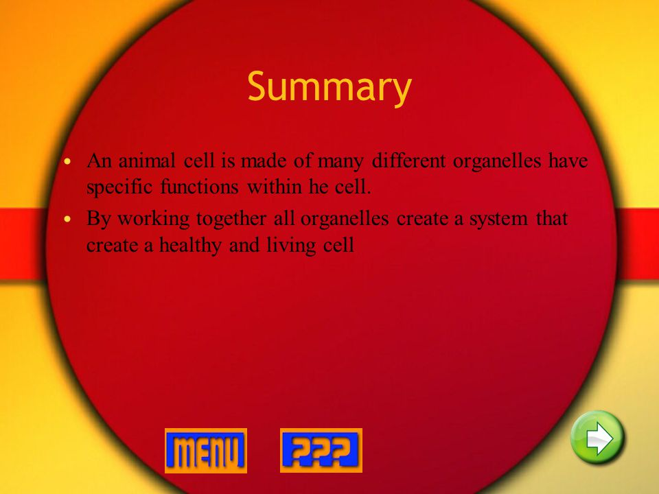 Summary An animal cell is made of many different organelles have specific functions within he cell.