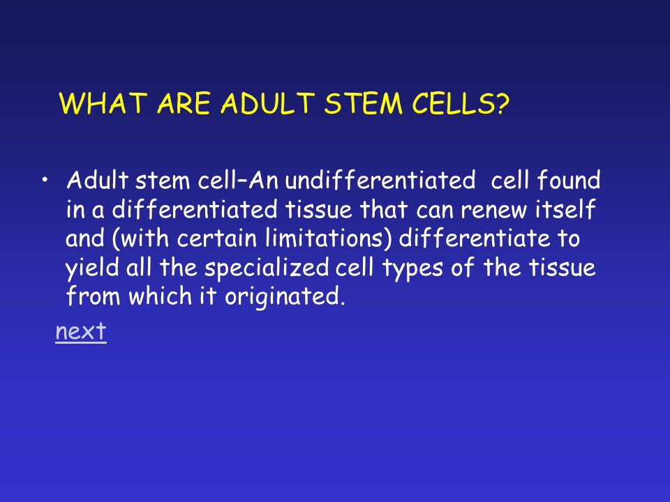 WHAT ARE ADULT STEM CELLS