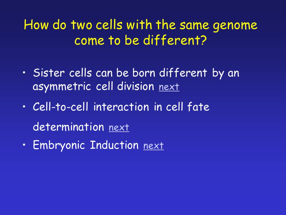 How do two cells with the same genome come to be different