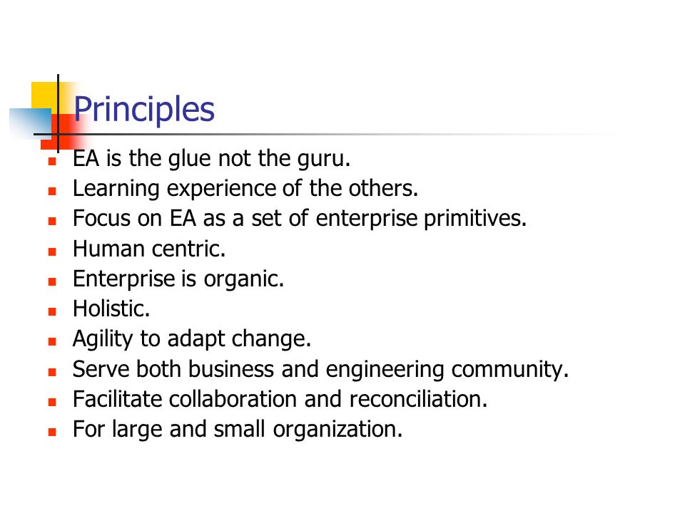 Principles EA is the glue not the guru.