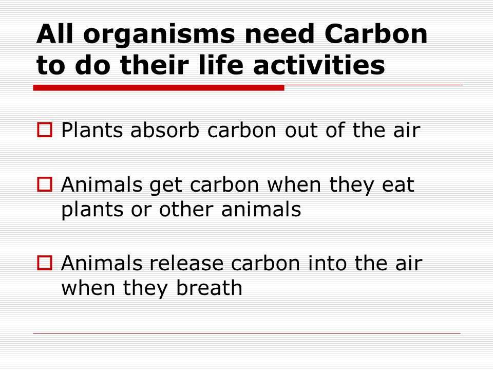 All organisms need Carbon to do their life activities