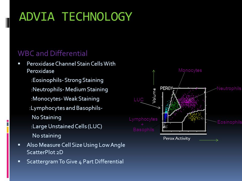 ADVIA TECHNOLOGY WBC and Differential