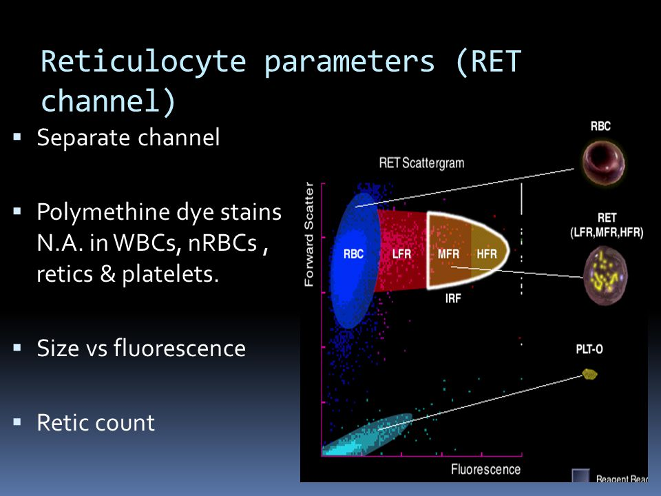 Reticulocyte parameters (RET channel)