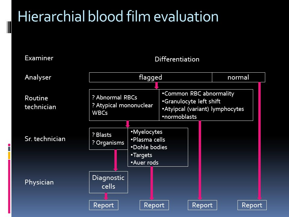 Hierarchial blood film evaluation