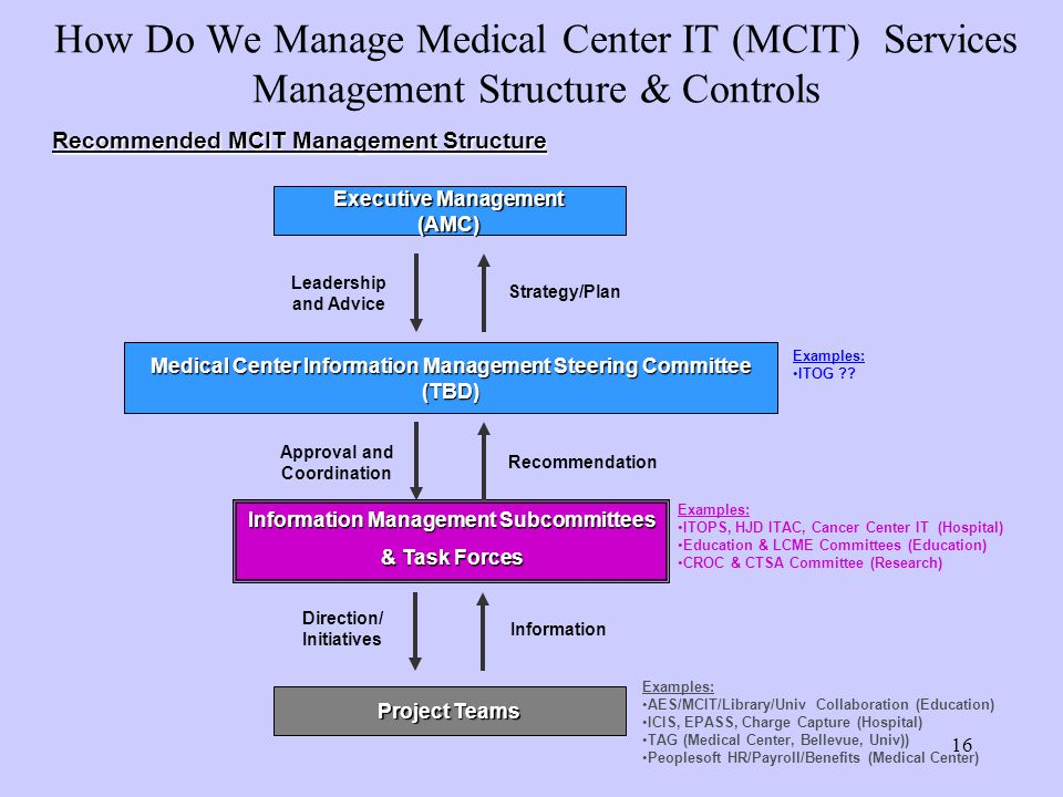 How Do We Manage Medical Center IT (MCIT) Services Management Structure & Controls